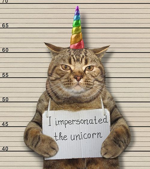 image of cat have mug shot taken in uniform disguise